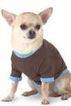Personalized Pet Clothing