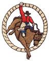 Bronc Rider*