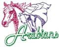 Arabian Logo Outline*