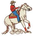 Reining Horse*
