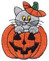 Kitten In Pumpkin