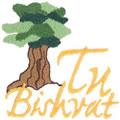 Tu Bishrat*