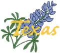 Texas Bluebonnet*