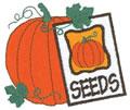 Pumpkin*