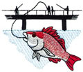 Red Snapper*