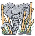 Elephant*