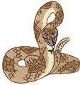 Rattlesnake*