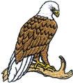 Sm. Eagle