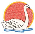Swan*