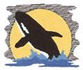 Killer Whale*
