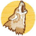 Coyote Logo*